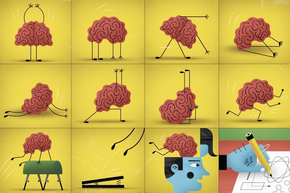 Hábitos para regenerar os neurônios