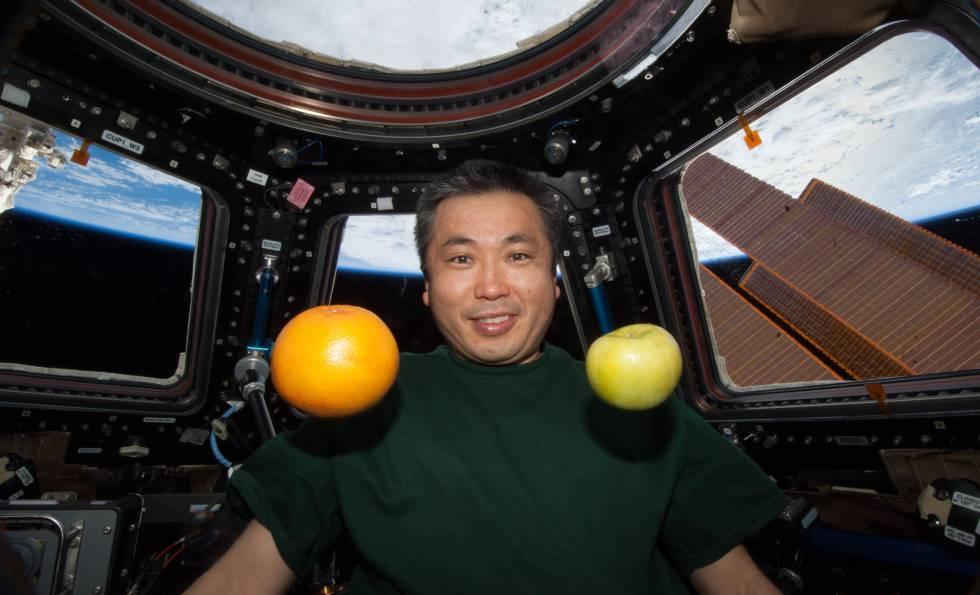 El comandante de la misión 39, Koichi Wakata, fue el encargado de tomar las muestras de bacterias.