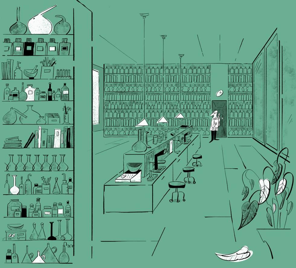 Una ciencia amilanada | Ciencia | EL PAÍS