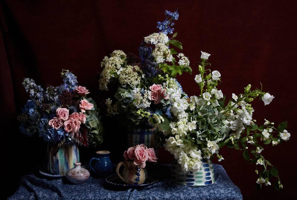 Flores Compre Flores Frescas Para Su Casa Y Se Sorprenderá