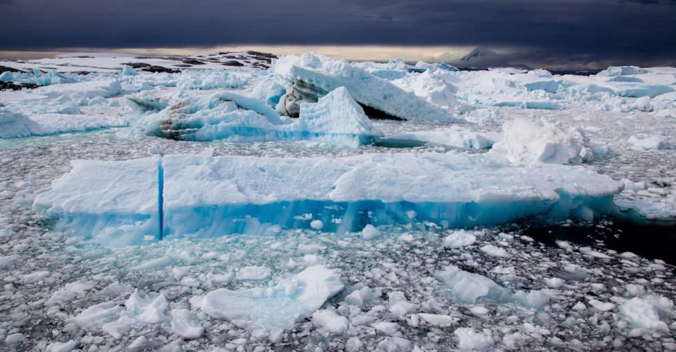 Hielos flotantes en Booth Island (Península Antártica).