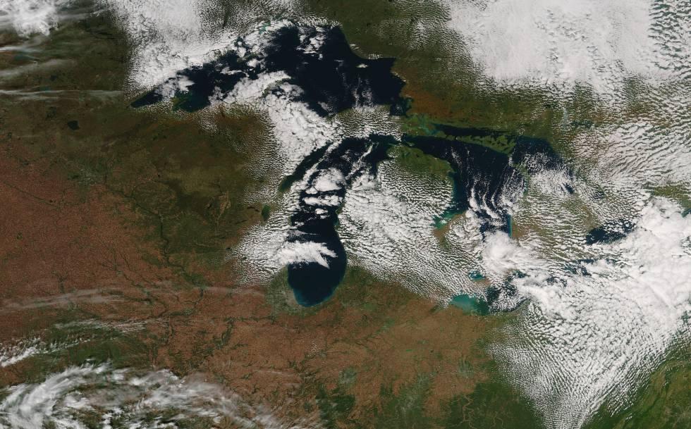 Varios eventos fenológicos, como la caída de las hojas (en marrón) de los bosques de los Grandes Lagos, se han visto afectados por el cambio climático.