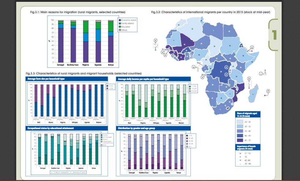 Infográfico que mostra os motivos principais para migrar no caso dos migrantes rurais de alguns países selecionados, as características dos migrantes internacionais por país em 2015 e as dos migrantes rurais e de seus lares.