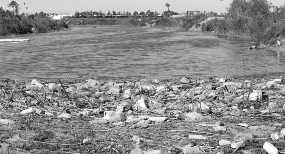 Cientos de botellas de plástico acumuladas en la desembocadura del Segura