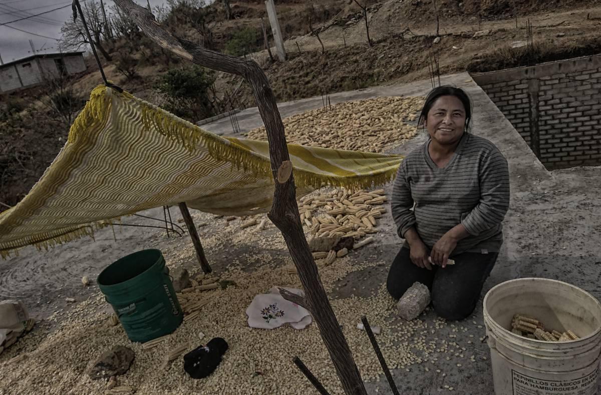 Lucina Urbano trabaja el maíz seco, en Santos Reyes Yucuná.