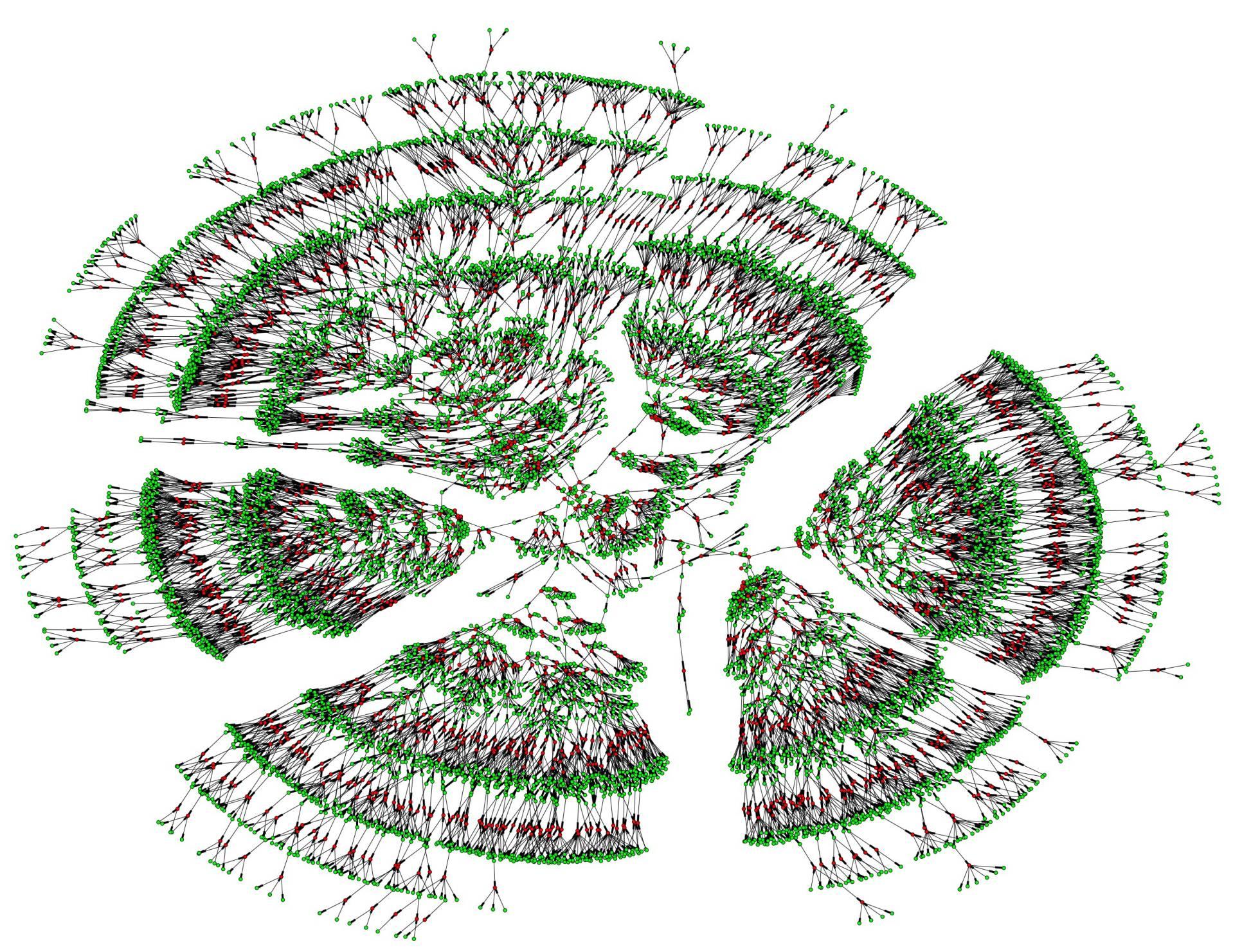 Visualização computadorizada de uma das árvores genealógicas de 6.000 pessoas, que abarca sete gerações. Os pontos verdes são indivíduos e os vermelhos são casais.