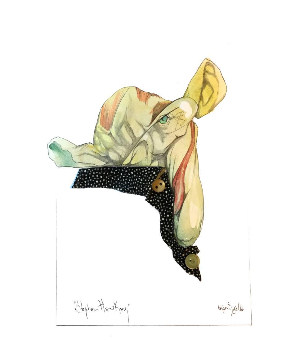 Resultado de imagen de sciammarella stephen hawking