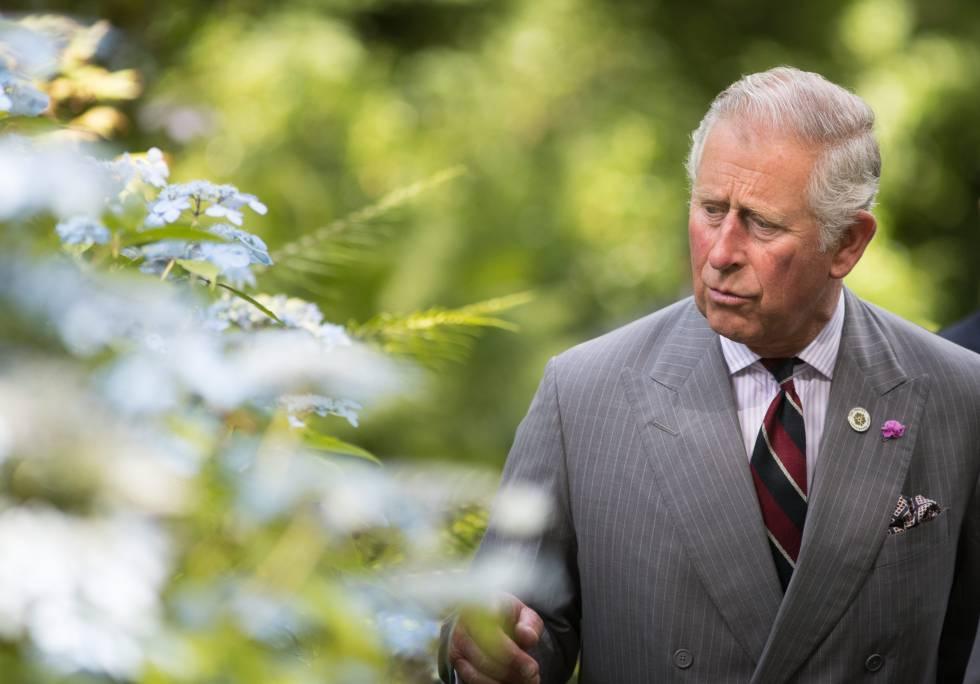 Carlos de Inglaterra, maniático y envidioso | Gente y