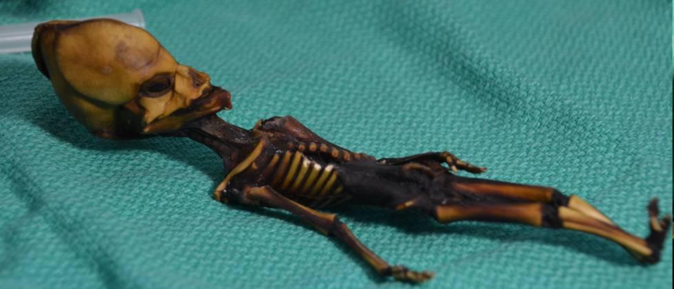 La pequeña fue encontrada momificada tras la iglesia de un pueblo minero abandonado.