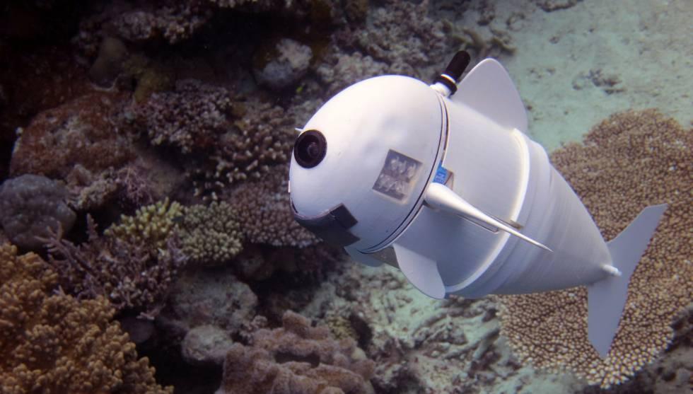 Resultado de imagen para soFi pez robot