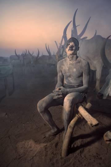 Joven mundari junto a sus  vacas al atardecer, en uno de los 'cattle camp' que pueblan las islas del Nilo Blanco, Sudán del Sur.
