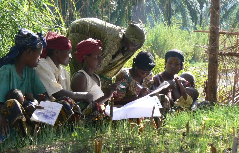 Agricultura Ecológica Agroecología Un Camino Hacia El