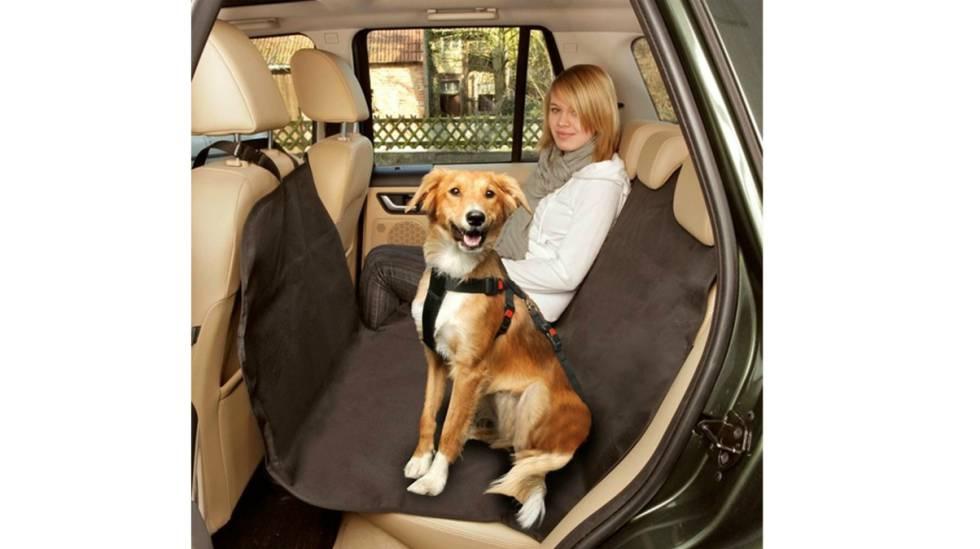 ¿Te gusta conducir? 14 accesorios para ir cómodo al volante y tener el coche ordenado