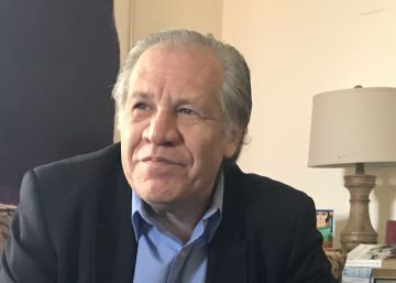 "OAS chief: ""The Americas are cutting out their corrupted parts"""