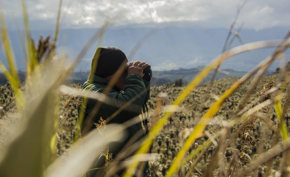 Carlos Mainagüez otea el horizonte a través de sus prismáticos.
