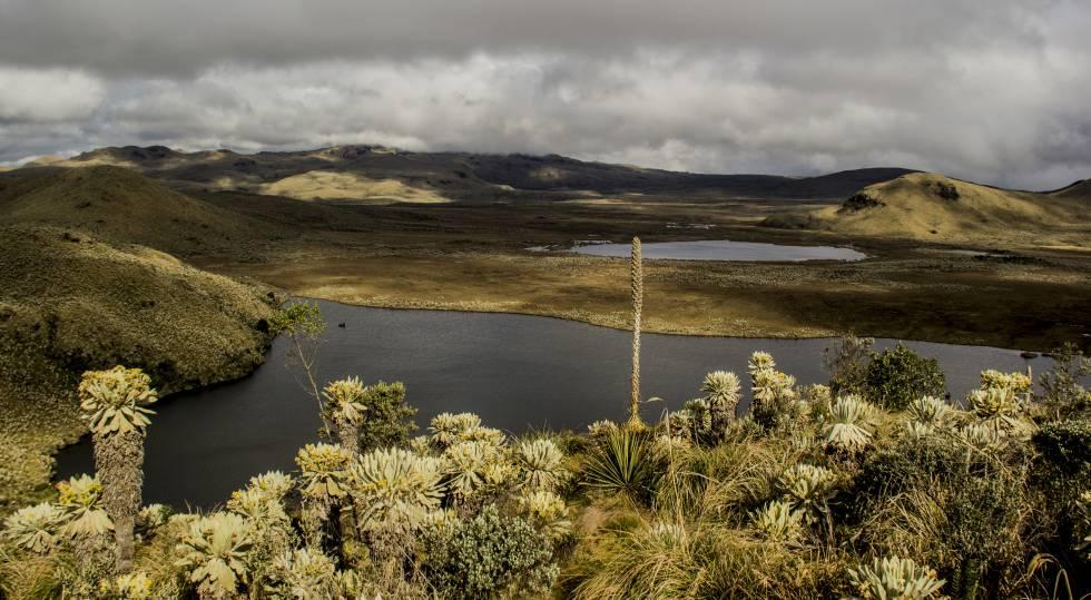 Las lagunas de El Voladero son uno de los principales atractivos turísticos de la reserva.