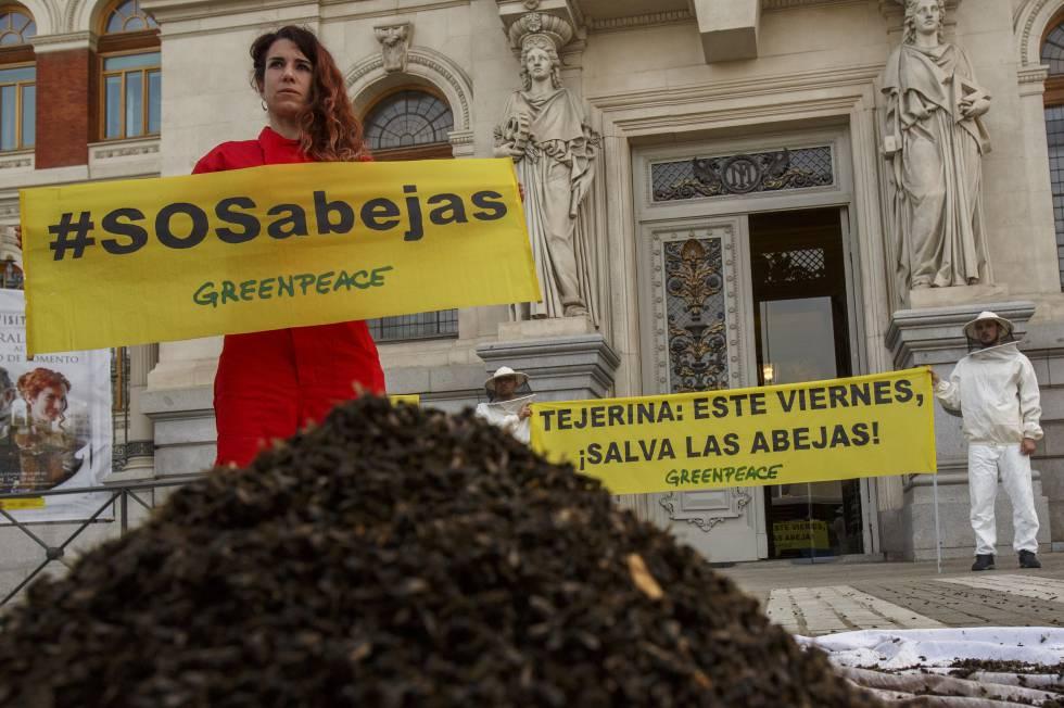 Activistas de Greenpeace colocan abejas muertas en la puerta del Ministerio de Agricultura, en Madrid, el pasado martes.