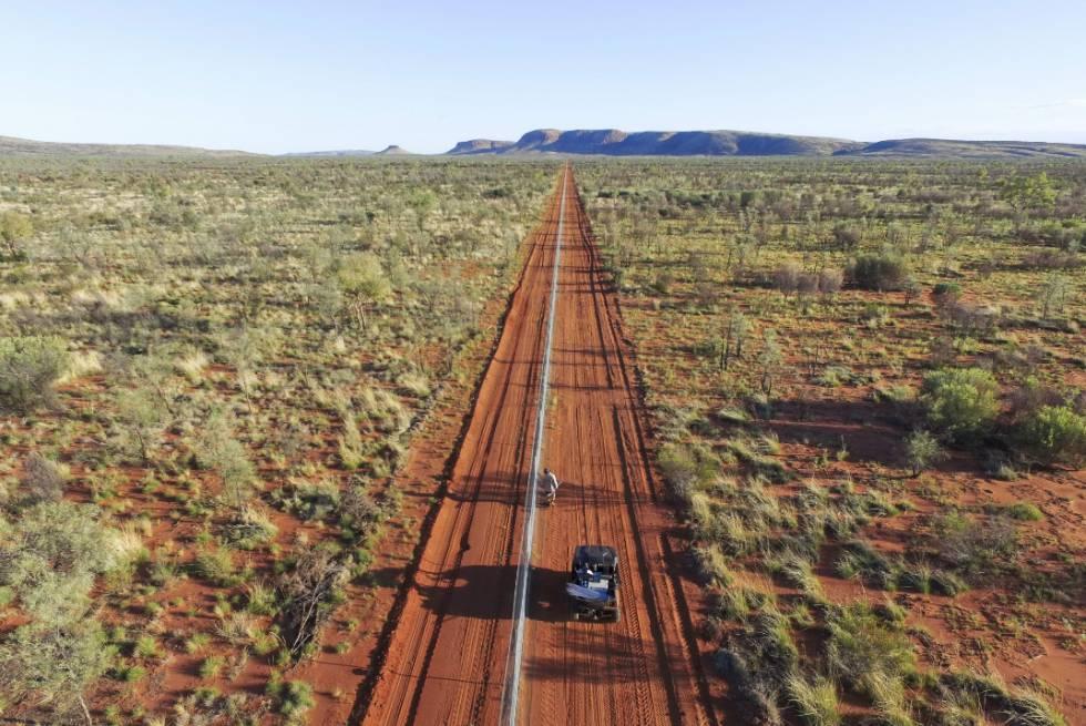 Australia construye una valla de 44 kilómetros para evitar que los gatos ataquen a marsupiales