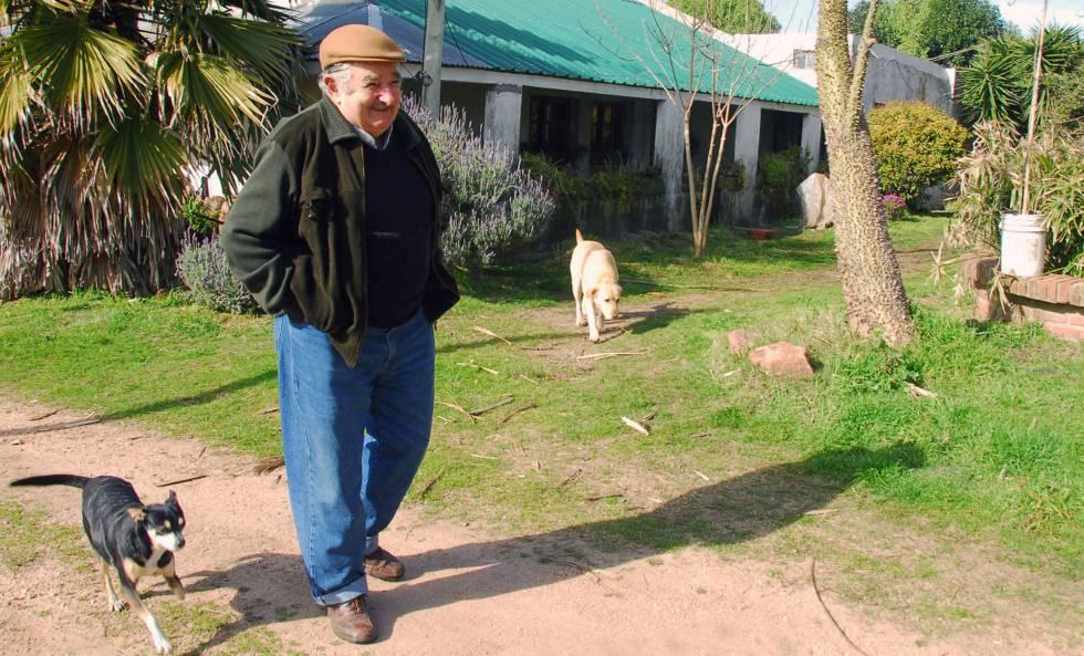 José Mujica acompañado de su mascota 'Manuela' y otro de sus perros.