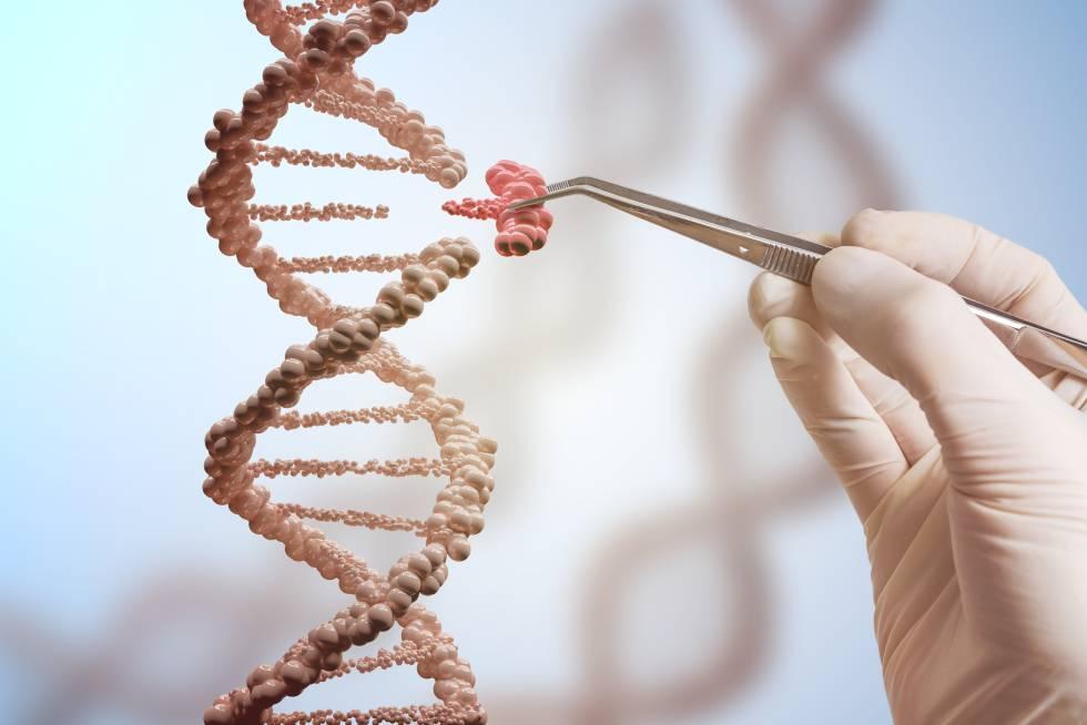 Resultado de imagen para edicion genetica