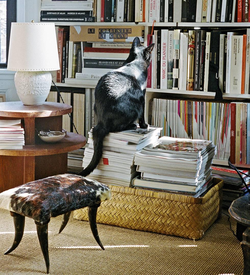 """Bargo es ecléctico, pero tiene dos centros de gravedad: """"Siempre me ha interesado el movimiento posmoderno y el 'art déco"""". Ossie, su gato, y su librería, lo atestiguan."""