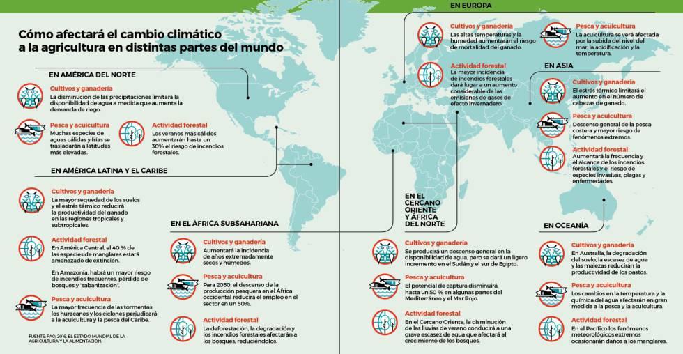 Cinco gráficos para entender el futuro de la alimentación