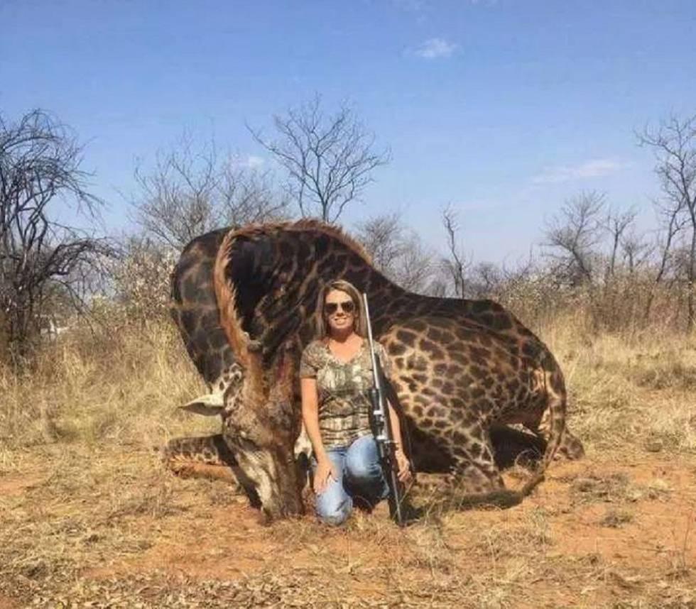 4a24110ce52 Una cazadora exhibe una jirafa muerta como trofeo y la llaman ...