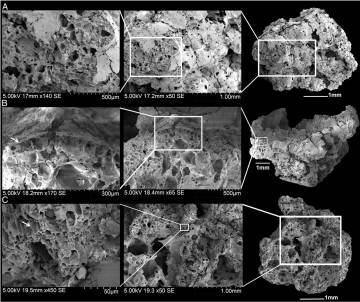 Imagen de tres de las muestras de pan vistas con microscopio electrónico de barrido.