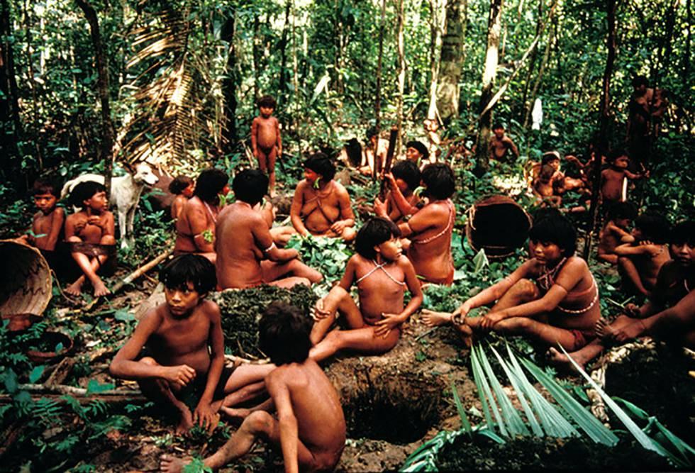Grupo de indígenas yanomami en la selva en Demini, Brasil.