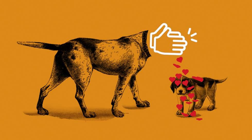 Você se ama de verdade?