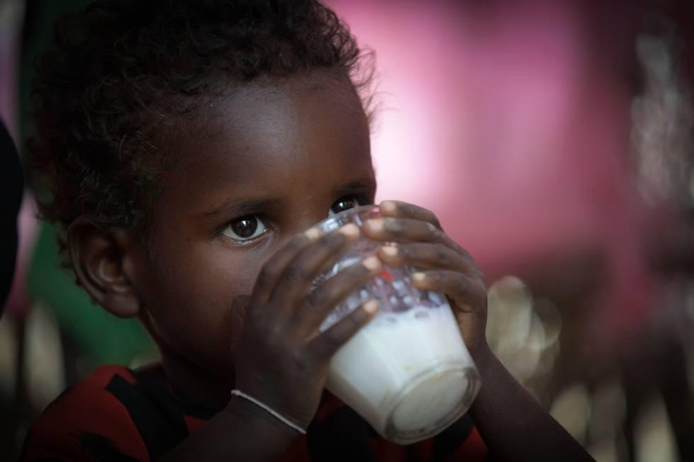 O número de crianças que sofrem atraso no crescimento caiu, uma das poucas boas notícias do relatório da FAO de 2018.