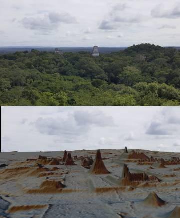 Vista de Tikal, arriba cubierta por la selva, abajo descubierta por lídar.
