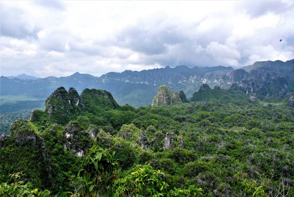 Paraje donde se encuentra la cueva de Lubang Jeriji Saléh, en Borneo.
