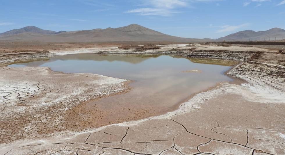 Laguna hipersalina formadas en el corazón árido del Desierto de Atacama después de las lluvias sin precedentes de 2015 a 2017.