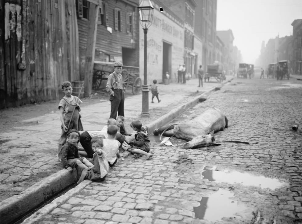 Un grupo de niños juega al lado de un caballo muerto en Nueva York, hacia 1900.