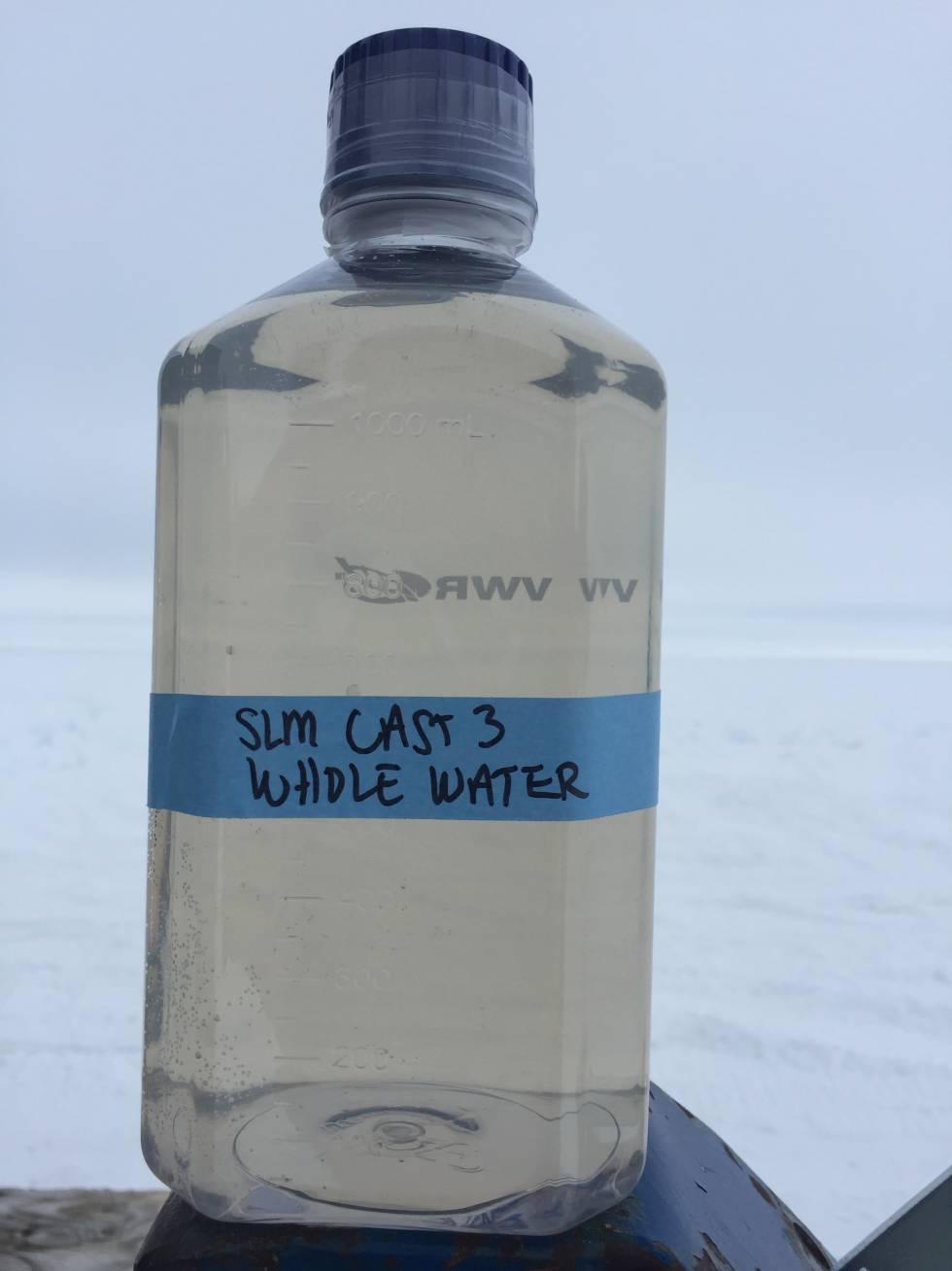 Una muestra de agua extraída del lago Mercer.