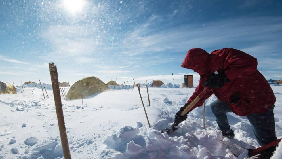 Hay vida en el fondo de la Antártida