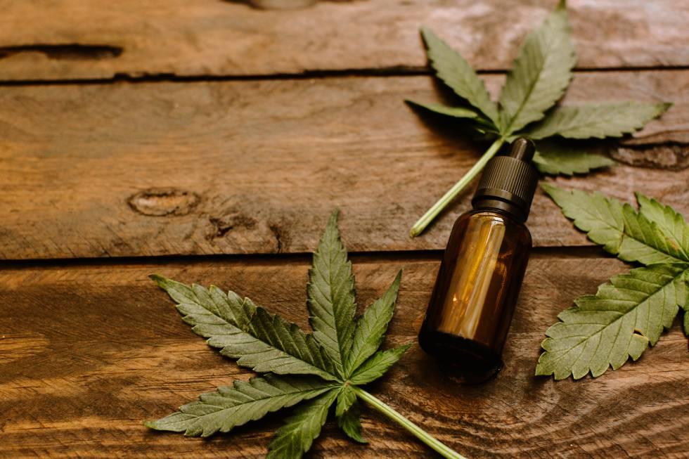 Resultado de imagen para aceite cannabis