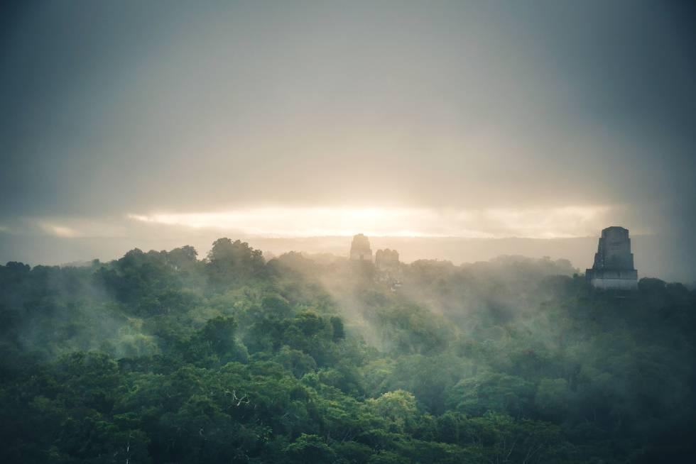 Dos de los templos de Tikal, descollando sobre el dosel de la selva del Petén, en Guatemala.
