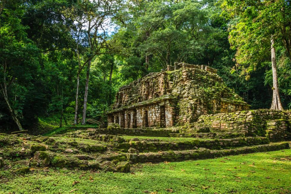 Ruinas de Yaxchilán, descubiertas en 1882 por el arqueólogo británico Alfred Maudslay.