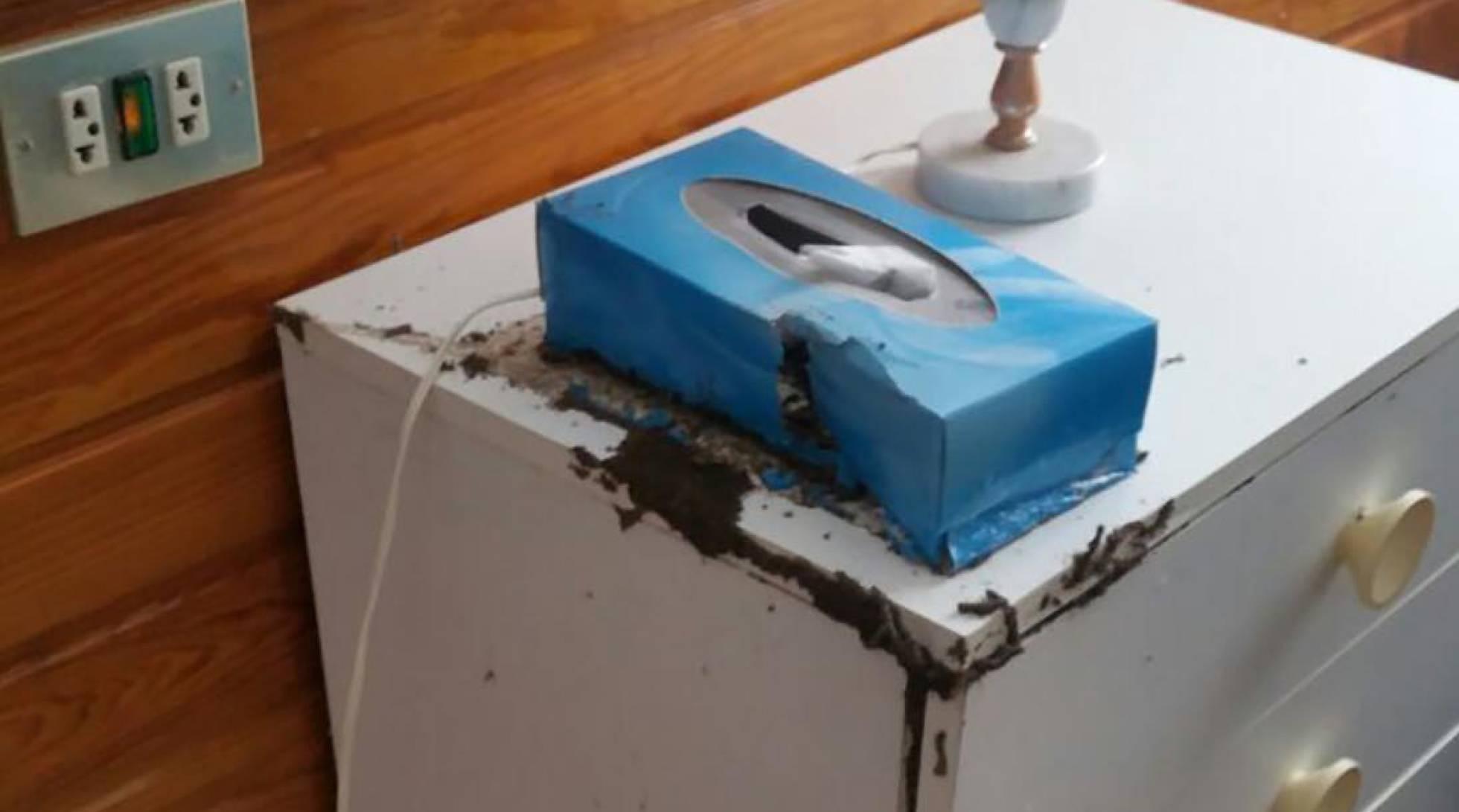 Casa afectada por las termitas.