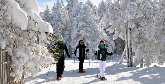Snowshoe hiking in Huesca is a popular winter activity. 339278f8af7cb