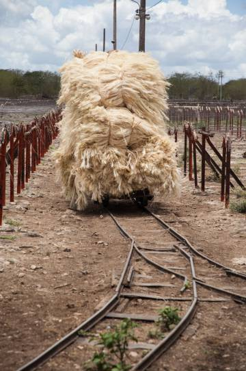 Las vías portátiles decauville proliferaron en explotaciones de muchos países. En Yucatán se instalaron más de 1.000 kilómetros. Decauville, un agricultor francés, dejó el campo y se dedicó a comercializarlas.