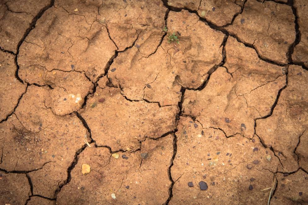 Las formas de vida basadas en la agricultura son cada vez más inciertas debido a la alta variabilidad del clima.