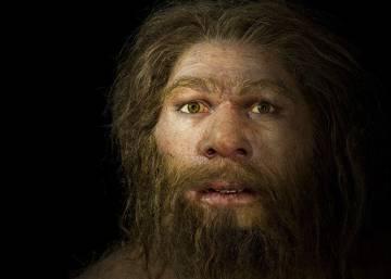 Resultado de imagen para Homo luzonensis