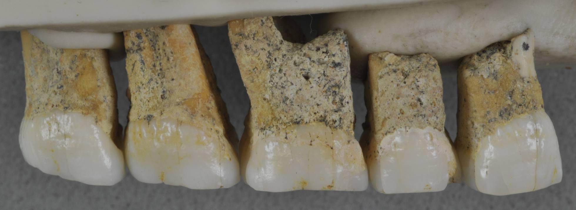 Hallados restos de una nueva especie humana en Filipinas 1554913422_860525_1554914041_sumario_normal_recorte1