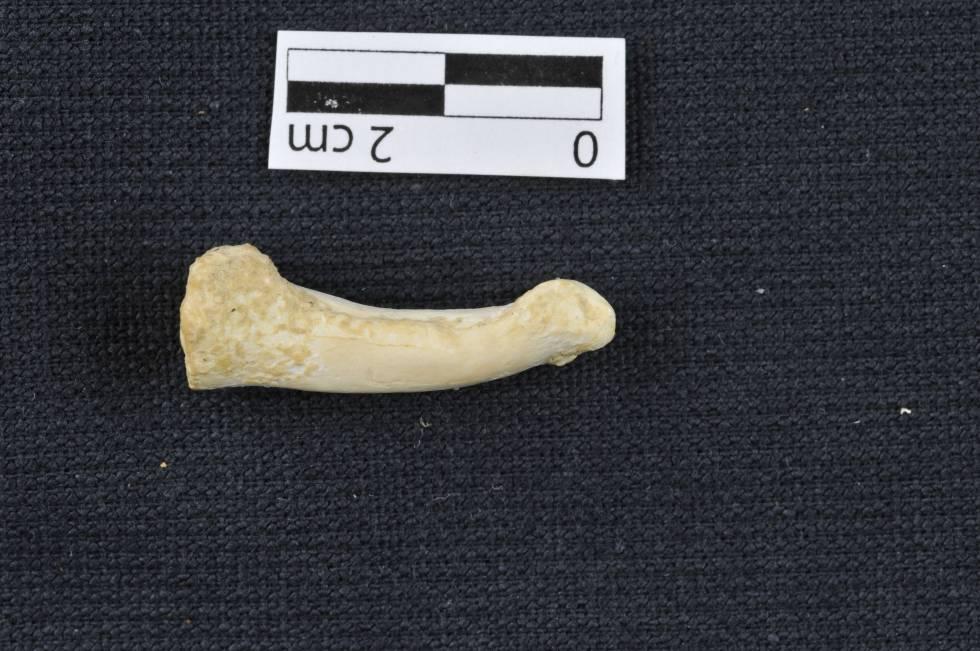 Uno de los restos óseos hallados en Callao (Filipinas).