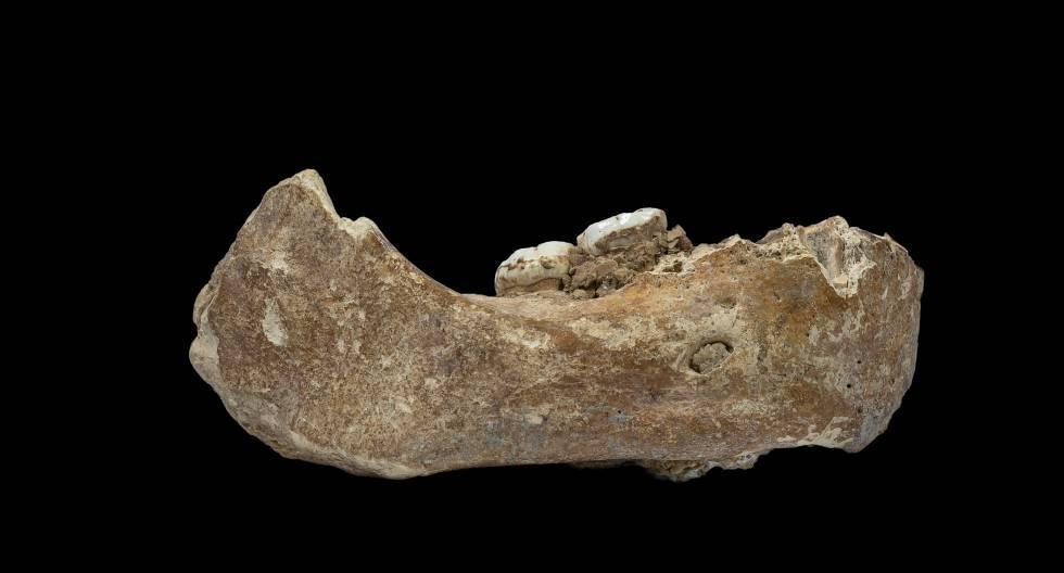 Una misteriosa especie humana conquistó el techo del mundo hace 160.000 años
