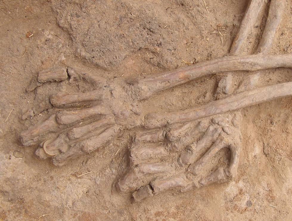 Un cadáver en la fosa de La Andaya (Burgos) con una alianza en la mano izquierda.