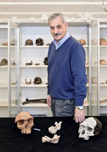 El paleoantropólogo José María Bermúdez de Castro.